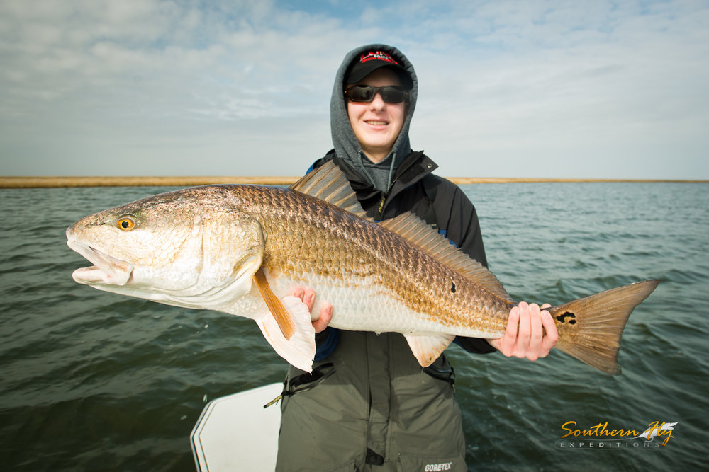 sight and spin fishing for redfish in louisiana with southern fly expeditions