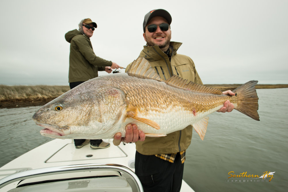 things to do in new orleans fly fishing charter with southern fly expeditions