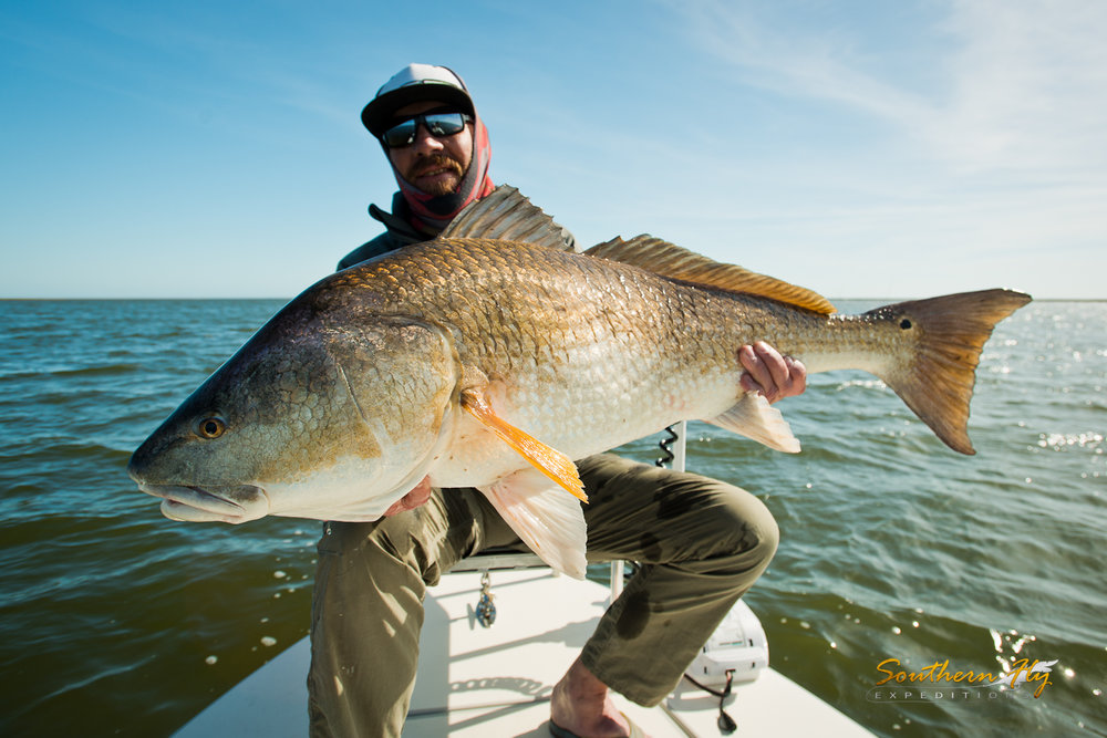 when is the best time to fly fish in new orleans louisiana