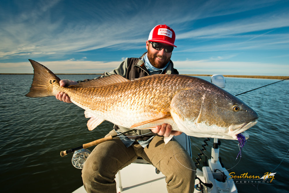 best redfish guide new orleans louisiana southern fly expeditions