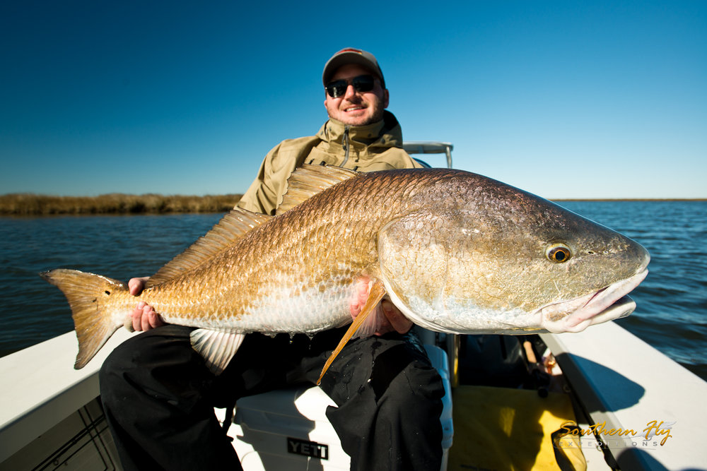 the best time to fish on the fly in southern louisiana with southern fly expeditions