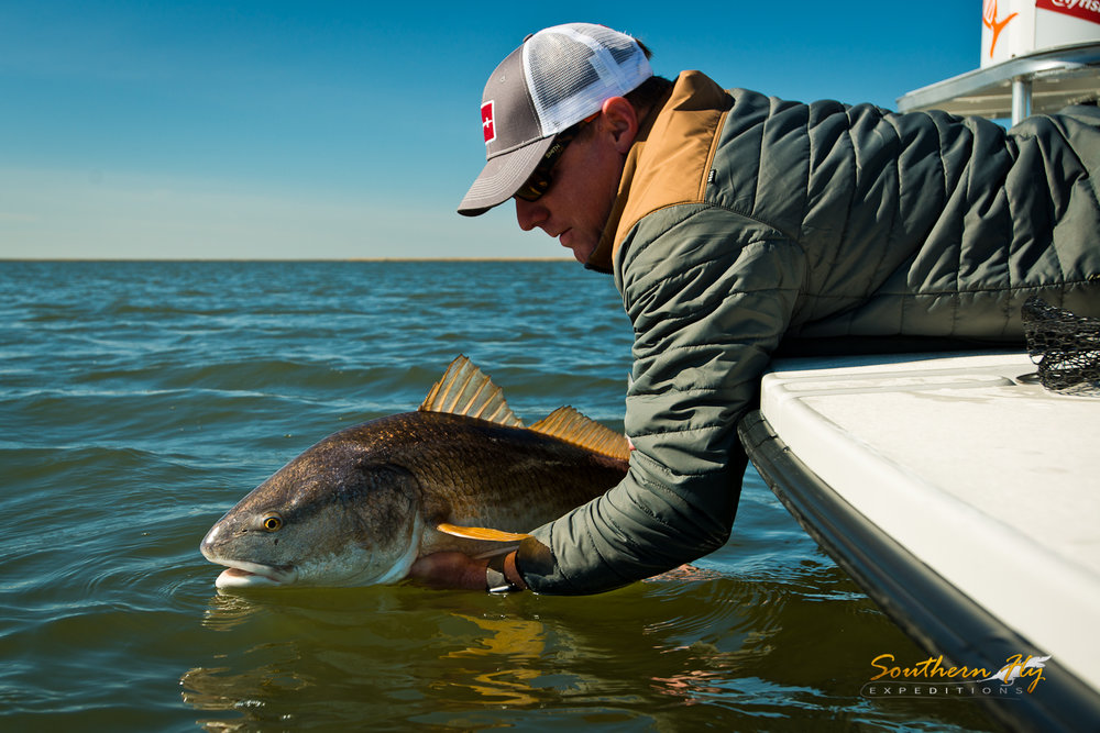 when is the best time to fly fish outside of new orleans louisiana southern fly expeditions