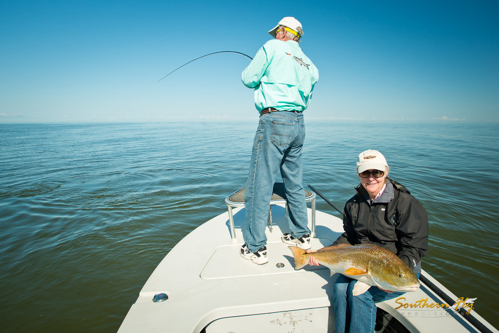 best time to fish for redfish in louisiana southern fly expeditions