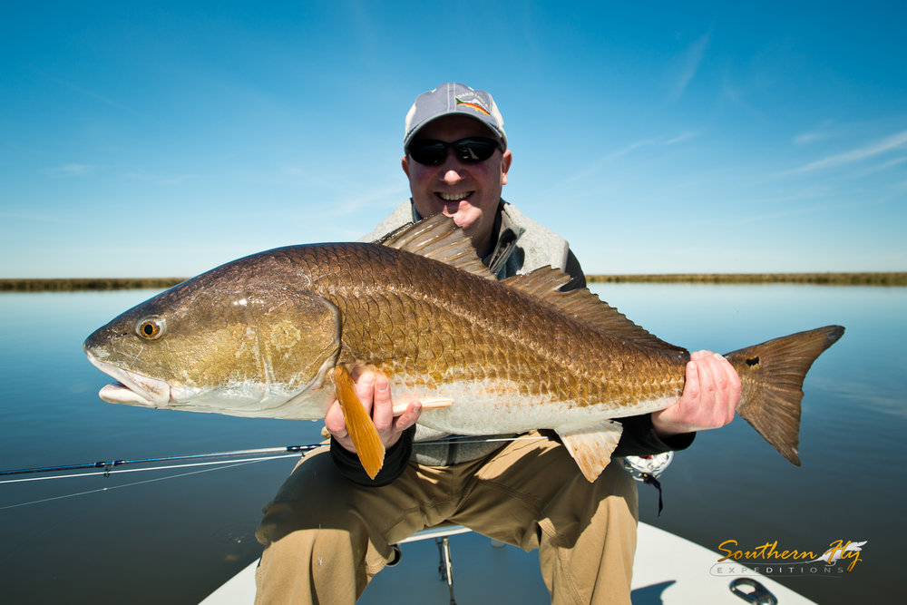 best time to fish for redfish in louisiana and southeastern louisiana southern fly expedtions