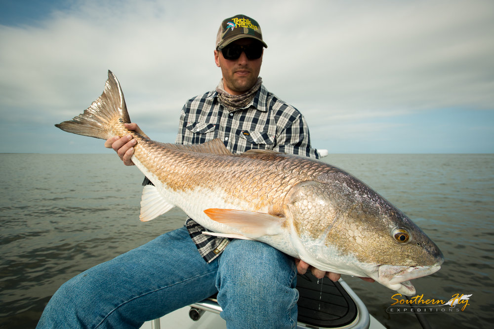 fly fishing for redfish in louisiana with southern fly expeditions