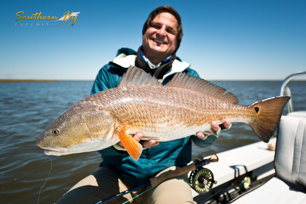 fly fishing vacation in new orleans louisiana southern fly expeditions