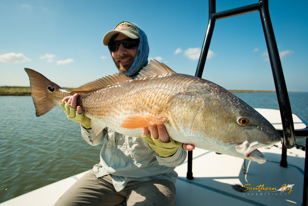 best vacation redfish guide with southern fly expeditions and captain brandon keck
