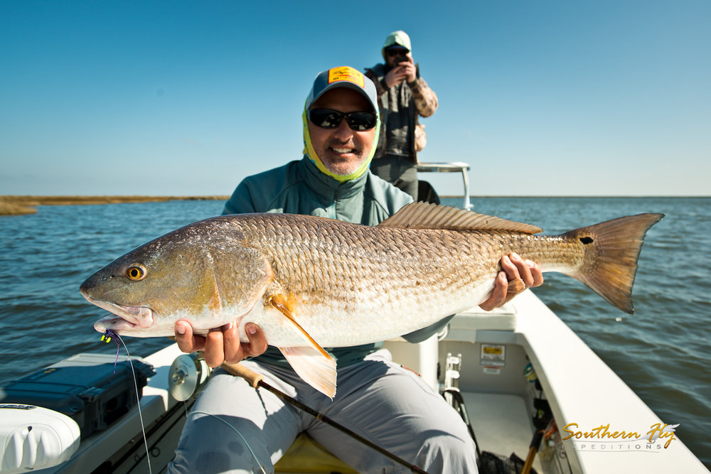 Redfish Fly Fishing New Orleans  Southern Fly Expeditions