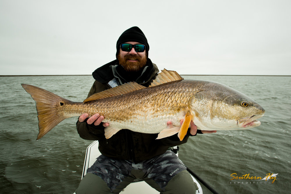 Shallow Water Redfish Fly Fishing Guide Southern Fly Expeditions