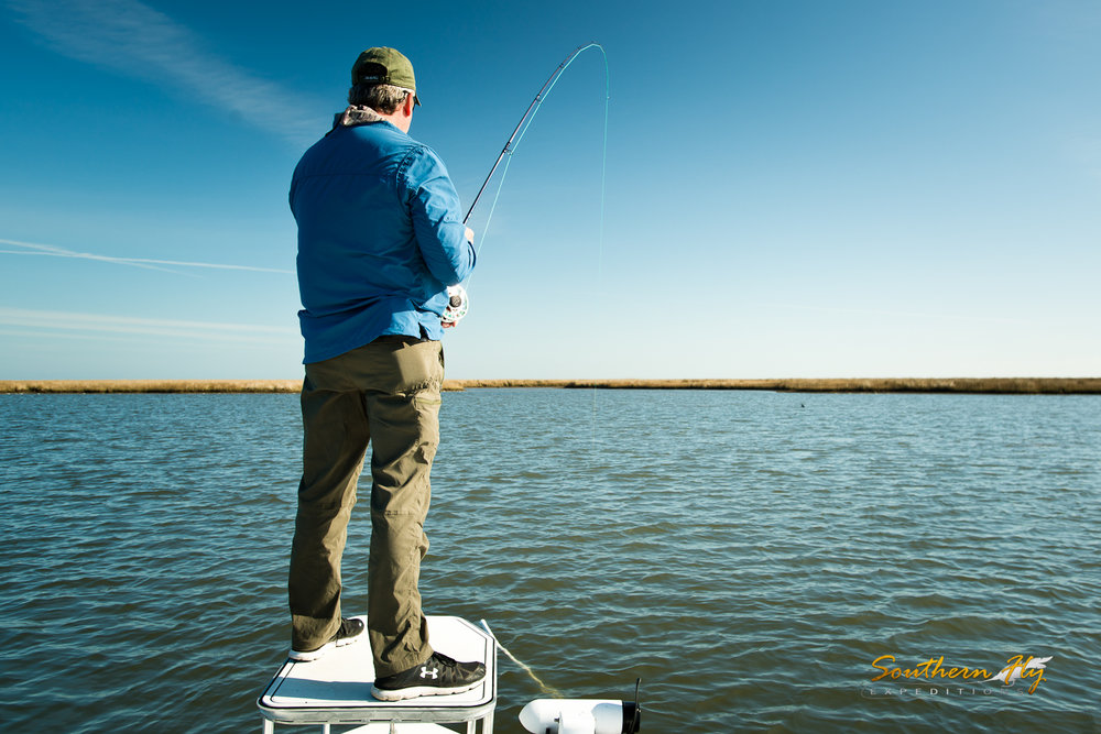 Redfish Sport Fly Fishing Trips New Orleans Southern Fly Expeditions