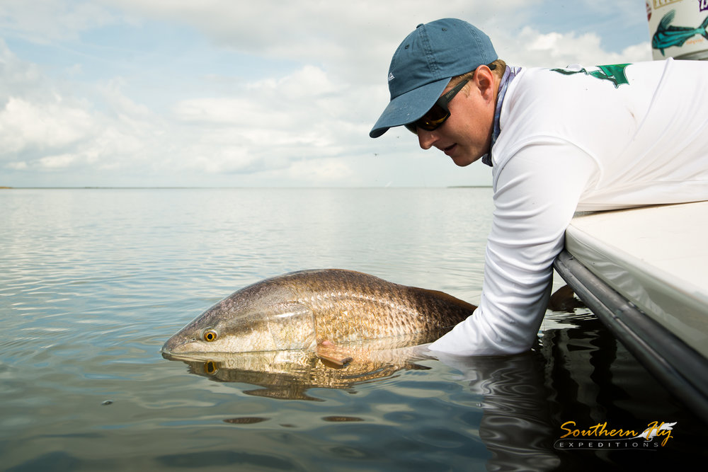 Catch and Release Guide Louisiana Gulf South Southern Fly Expeditions