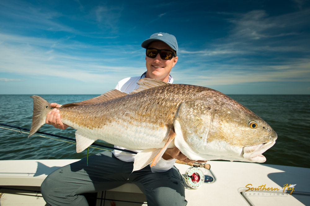 Fly Fishing Trips Redfish Guide Southern Fly Expeditions