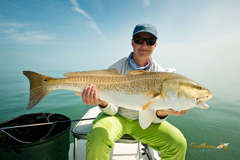 Sight Fly Fishing Guide Louisiana Southern Fly Expeditions