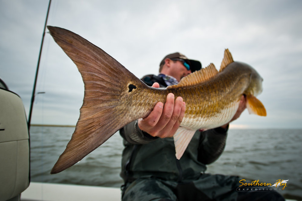 2018-11-19-21_SouthernFlyExpeditions_NewOrleans_JuddJacksonMikeO'Dell-17.jpg