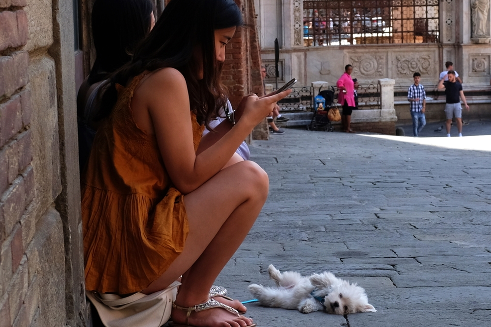 Sleepy in Siena