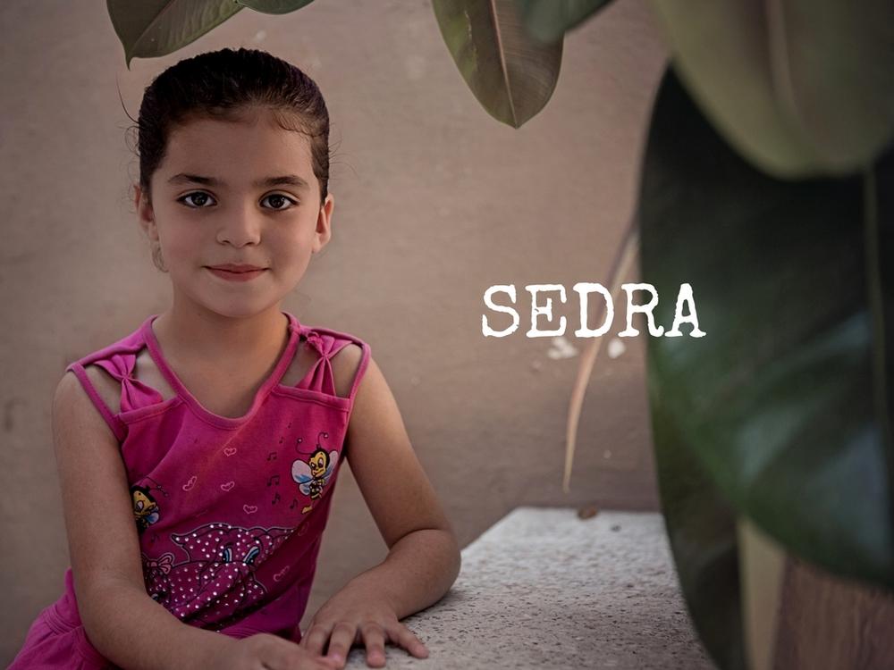 Sedra Hamadi.jpg