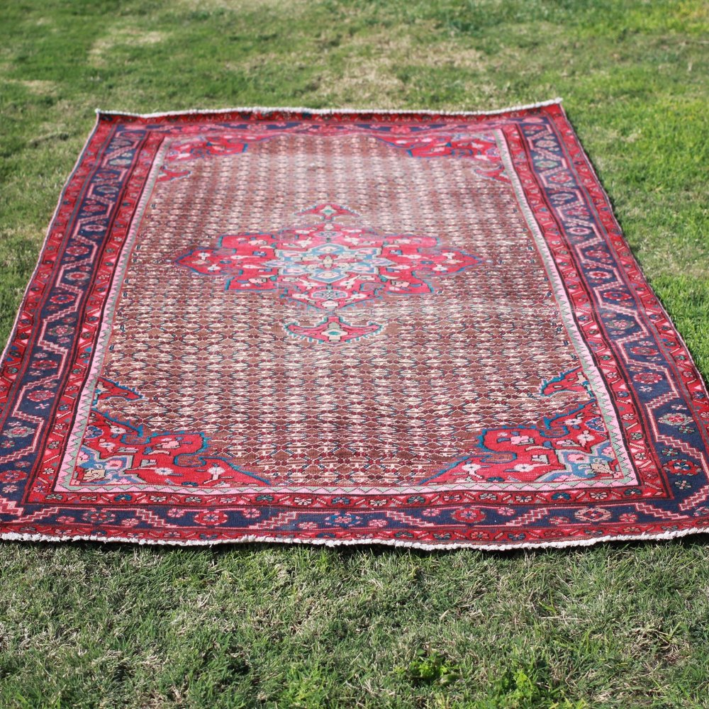 Red + Blue Persian Area Rug