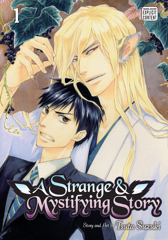 A Strange And Mystifying Story GN01.jpg
