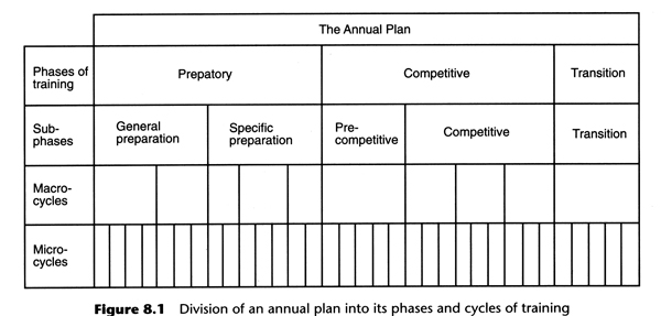 annual plan and training phases.jpg
