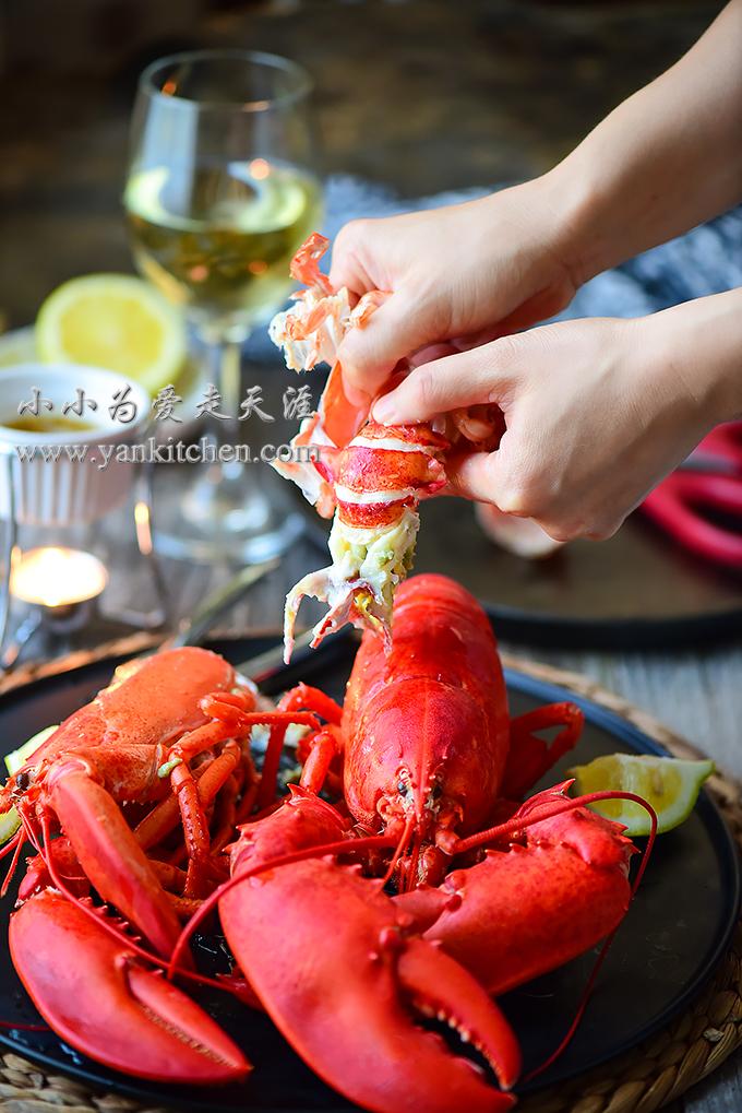Boiled Lobsters — Ya...