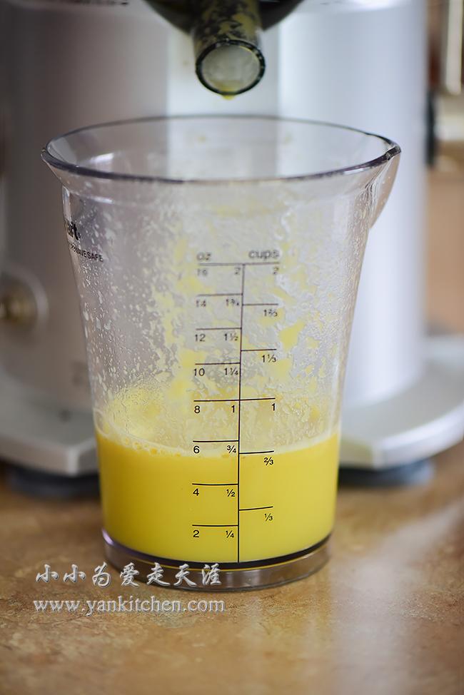 Large x orange juicer