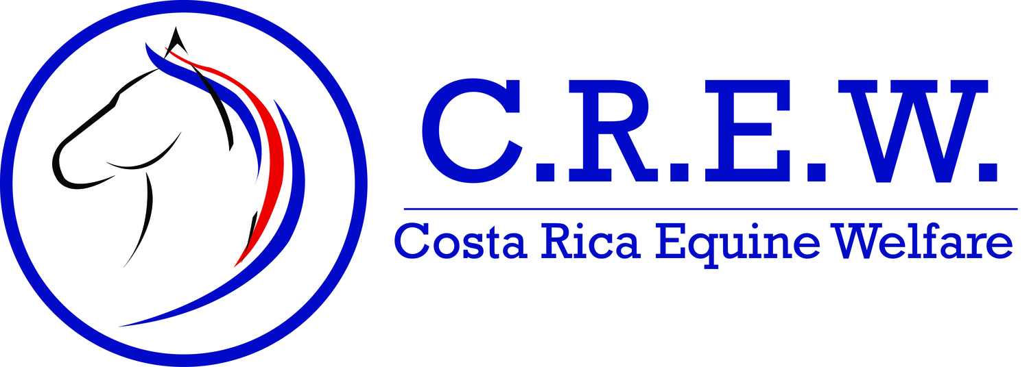 Costa Rica Equine Welfare