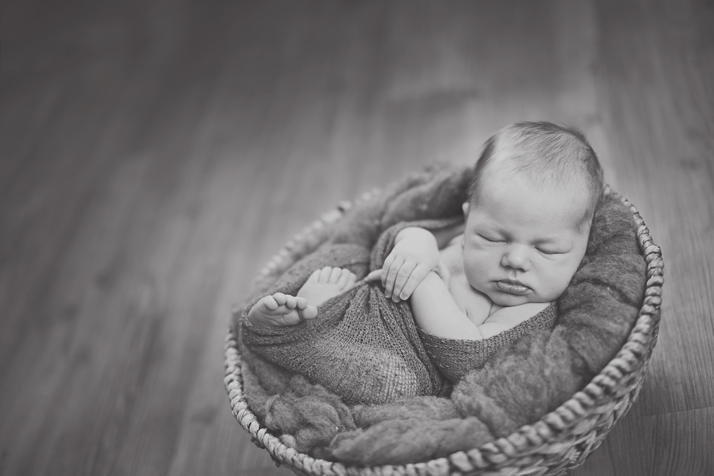 Watertown NY newborn photographer
