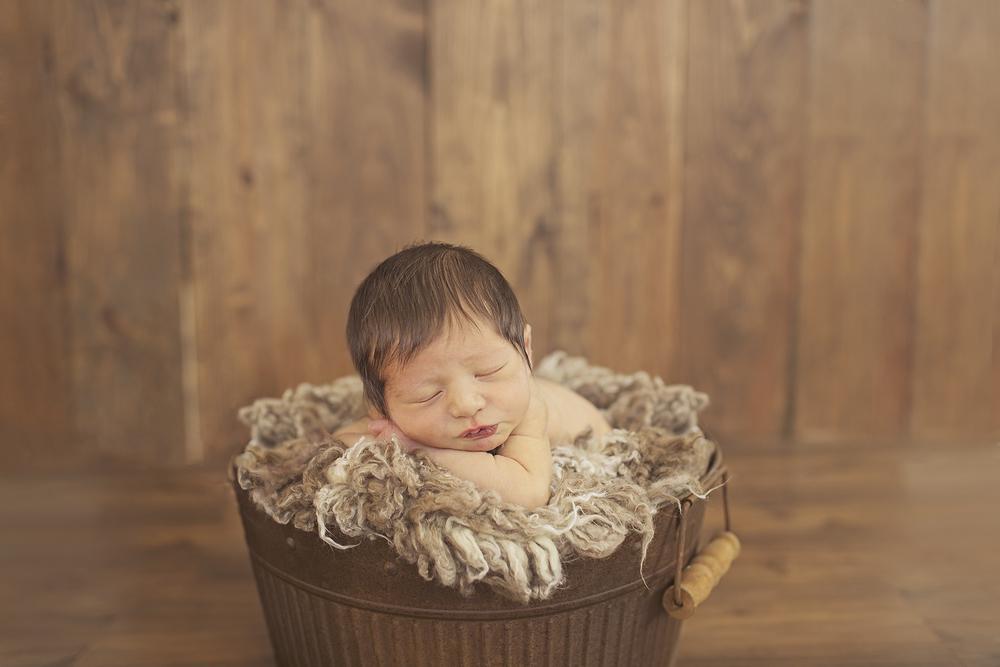 upstate NY newborn photography