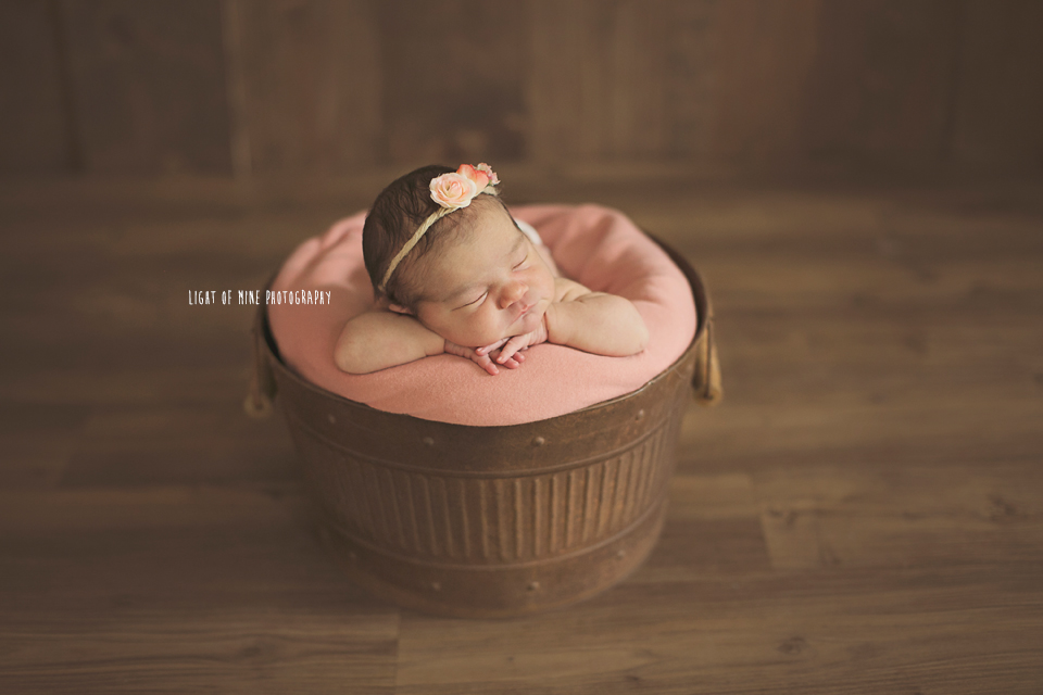 Clay NY Newborn Photographer