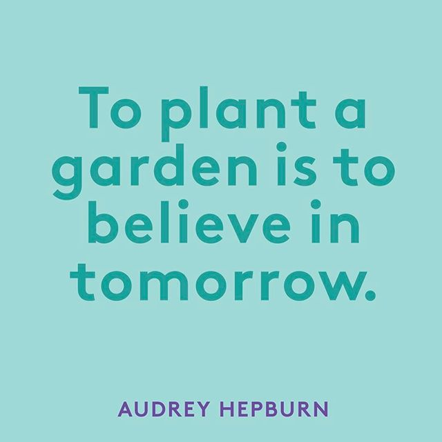 The same is true when planting ideas 💡 for your business.  #girlboss #entrepreneur #entrepreneurlife #staymotivated #believeintomorrow #socialmediamarketing #socialnetworkingdiva