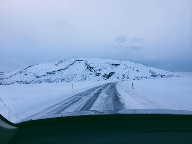 Glad to be back home in the sunshine, but missing Iceland. #iceland #goldencircle #roadtrip #winter