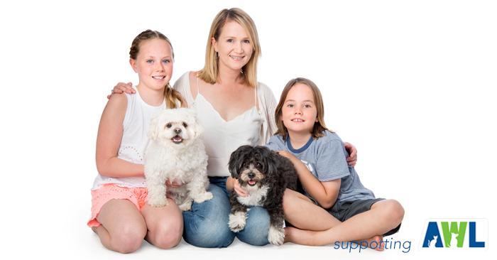 3 fluffy dog photography adelaide sa south australia.jpg