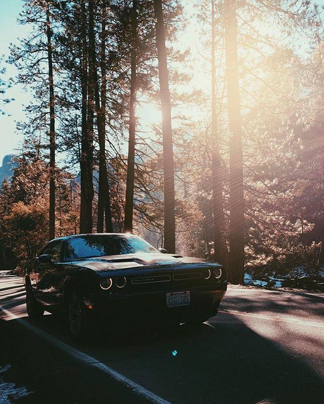 #light #naturephotography #nature #yosemite #yosemite #cali #cars #park #vsco #dodge #forest #vscocam #usa #california #light