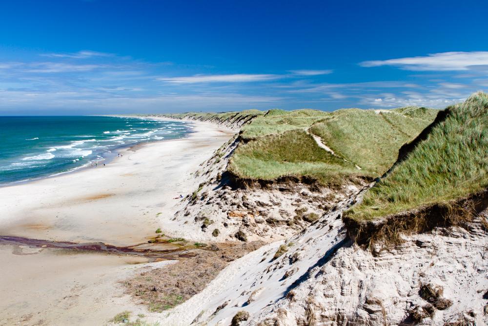 Thy National Park dunes