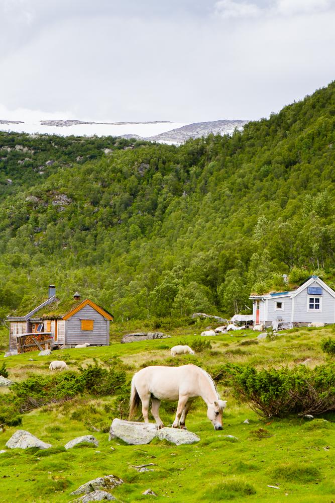 Fonglefonna glacier overlooking summer meadow cabins