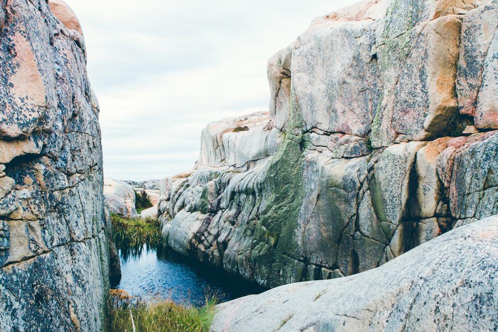 3.1 Valövägen Wildlife Reserve Sweden-16.08.17-TGP-4-72dpi.jpg