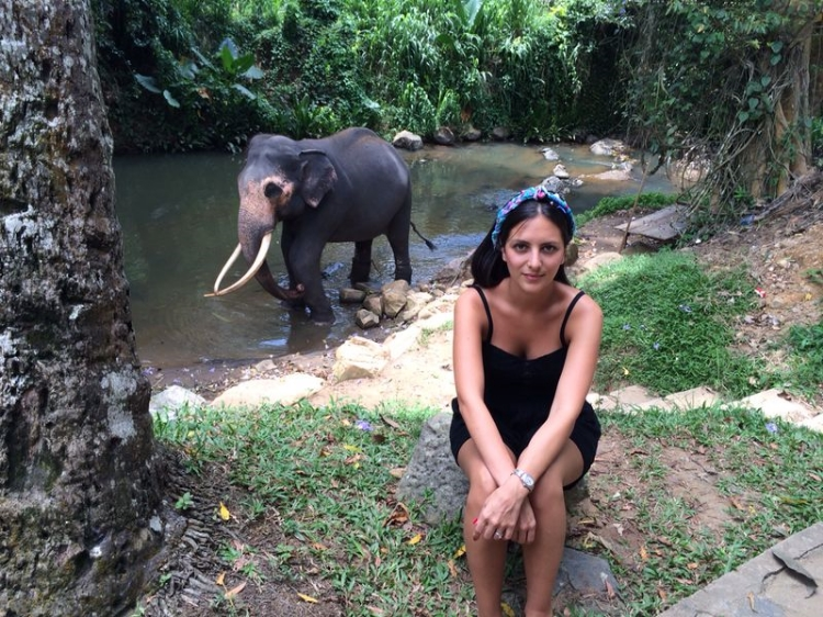 Kandy, Sri Lanka (Millennium Elephant Foundation)