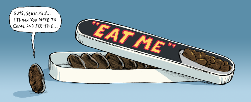 food113alt.png