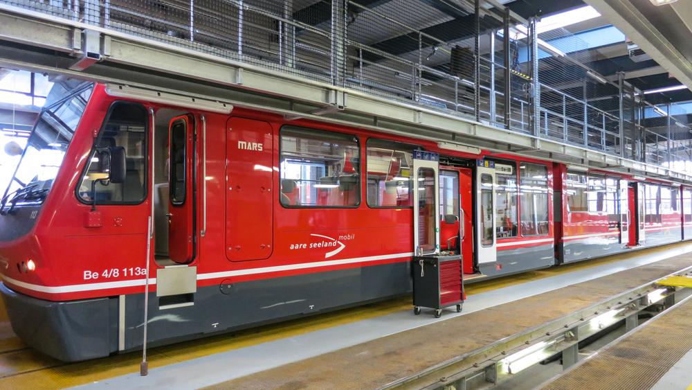 Zug im Depot