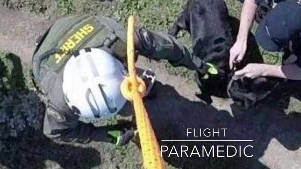 Paramedic-Staff.png