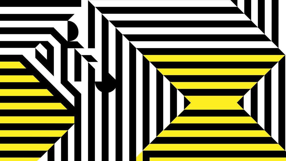 zebra_8.19_forweb-12.jpg