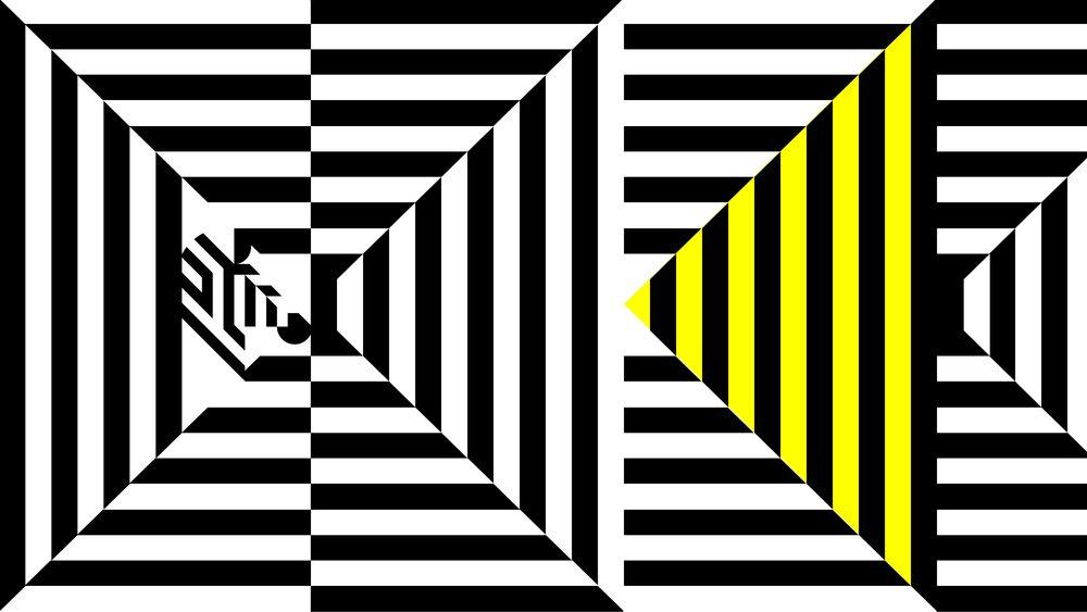 zebra_8.19_forweb-10.jpg