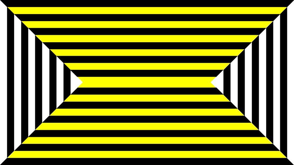 zebra_8.19_forweb-11.jpg