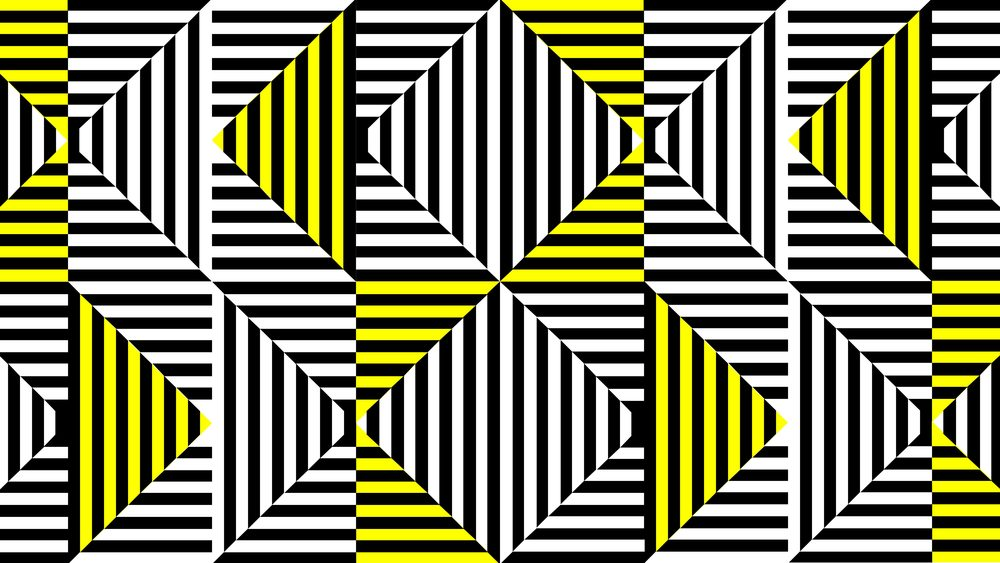 zebra_8.19_forweb-13.jpg
