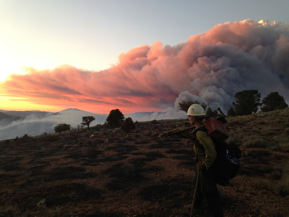 On the Bison Fire in Nevada, 2013.
