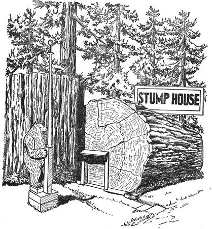Stumphouse_web.jpg