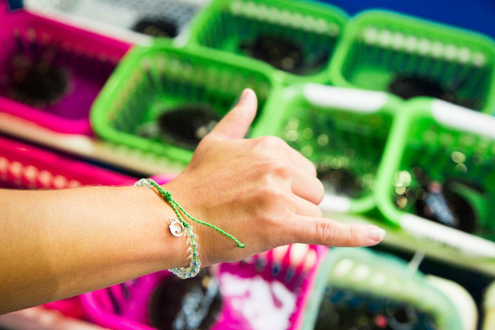 4Ocean Sea Turtle Lime bracelet_3.jpg
