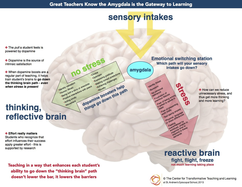 wbrain poster for Rodney no research copy-2 copy.jpg