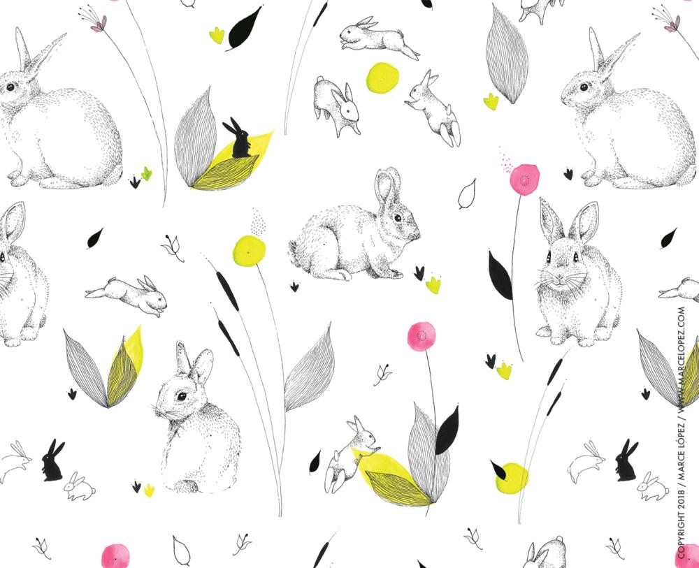 conejos.png