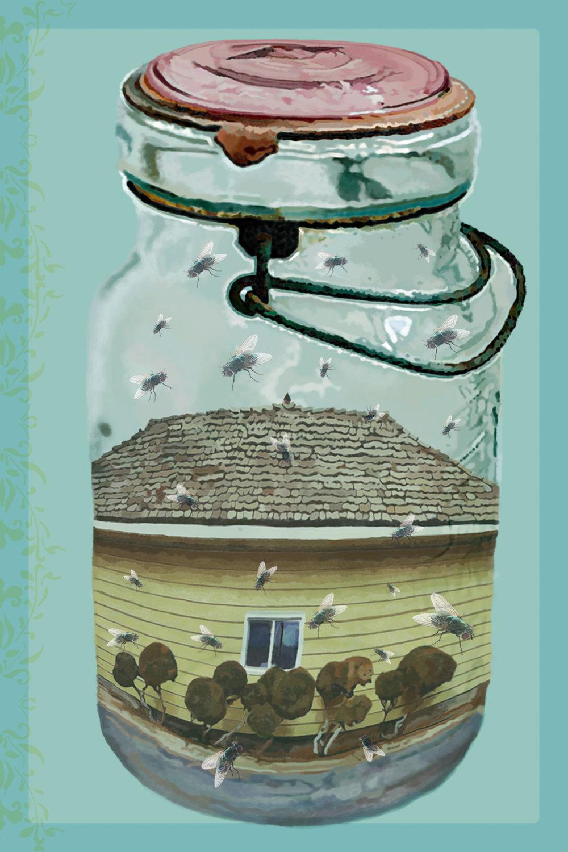 moscas en la casa rgb .jpg